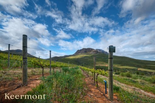 Keermont Estate Reserve Red